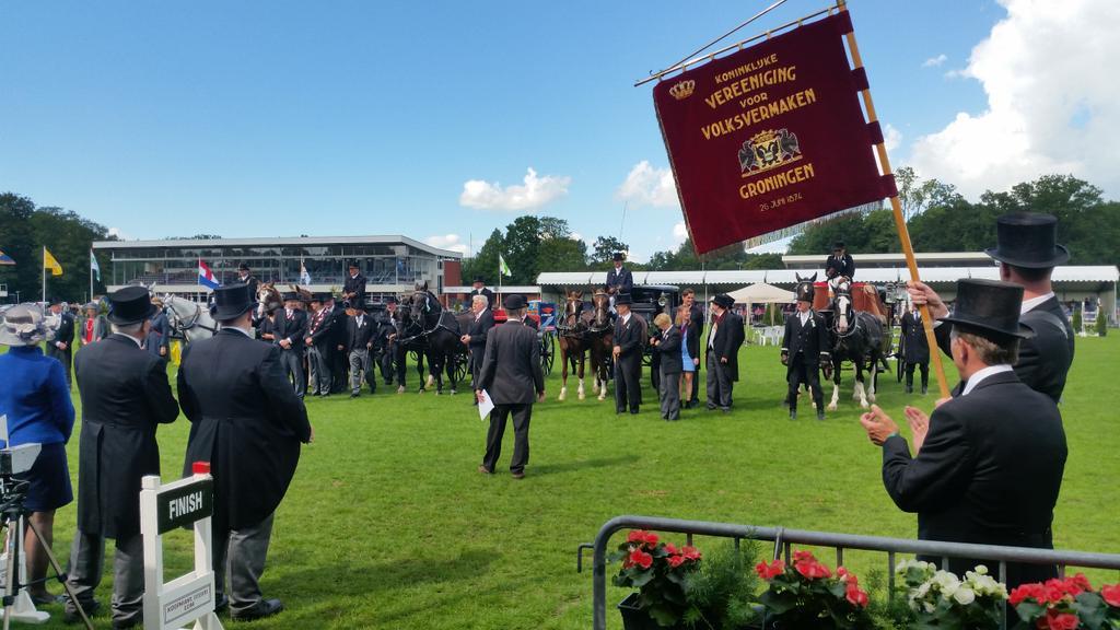 Veelzijdige paardensport op 't Peerdespul in Stadspark Groningen
