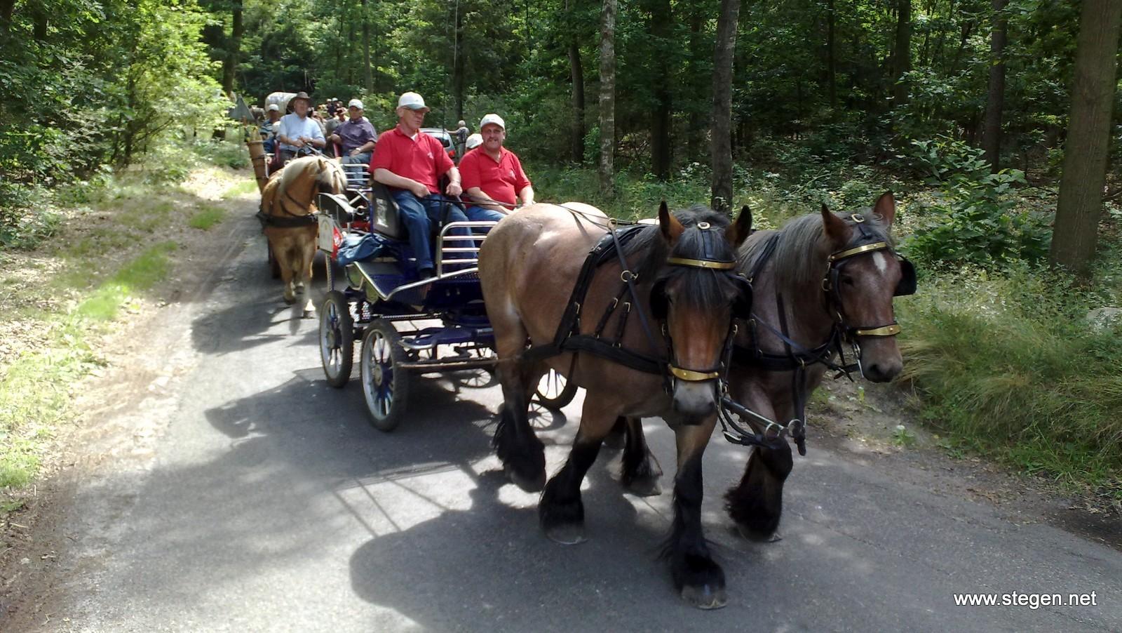 Het paardentoerisme kan in Drenthe volgens de VPD nog verder groeien.