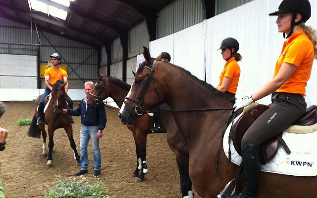 Nieuwe paardenveiling in manege Sleen