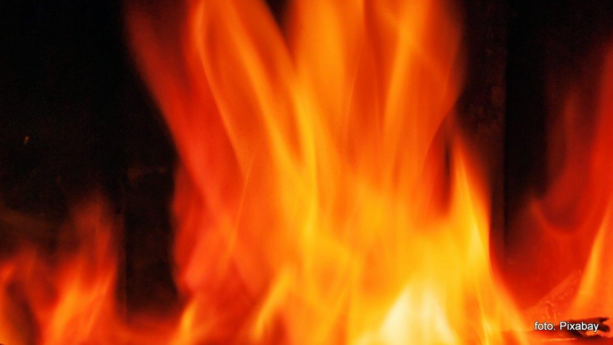 Vijf paarden dood bij grote brand familie Rothenberger