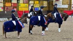 ponykampioenen